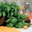 What Are The Various Italian Cooking Herbs