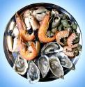 Top 5 Sustainable Seafood