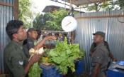 Sri Lankan Army Gets A Makeover - Goes Into Selling Vegetables
