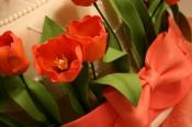 How To Make Sugar Paste Tulips?