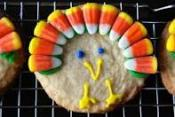 Tips To Bake Thanksgiving Cookies Quickly