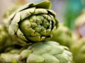 Artichoke Capsule Benefits