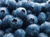 Blueberry Allergy-causes, Symptoms, And Cure