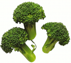 How To Keep Broccoli Fresh?