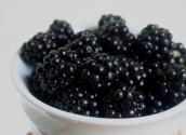 Gift Blackberry: How To Tips & Ideas