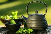 Green Tea May Prevent Oral Cancer