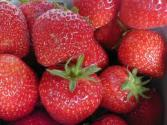 How To Clean Strawberries At Home