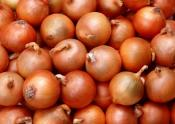 India Hits Onion Crisis With Sky-rocketing Prices