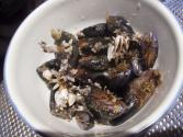 Tips To Identify Rotten Seafood
