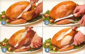 Turkey Carving Ideas