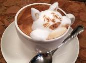 Amazing Foam Sculptures On Top Of Coffee!