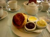 Cream Tea Scones