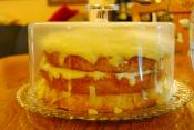 Lemon Sponge Cake