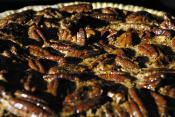 Pecan Crust