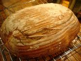 Cornmeal Sourdough Bread
