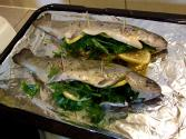 Basil & Shrimp Stuffed Trout
