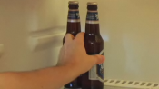 Tips To Store Beer Properly