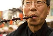 Un Asks People To Start Eating Insects