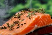 Top 10 Sustainable Salmon Varieties