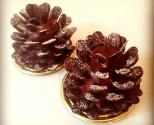 Ansel's New Fall Dessert - Gingerbread Pinecone