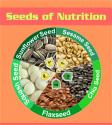 Top 5 Popular Seeds - Powerhouse Of Nutrition