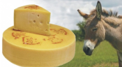 Serbian Donkey Milk Cheese Is The World&#039;s Most Expensive