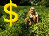 Grow Food & Reap Profits