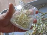 Lemongrass - How To Dry And Store