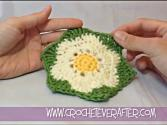Left Hand Motif Of The Month: July 2013 Floral Daisy Motif