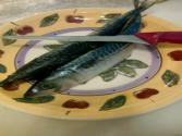 How To Clean A Whole Fish: Mackerel