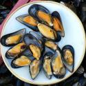 Mussels In Bacon
