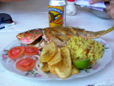 Greek Red Snapper
