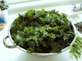 Raw Wilted Kale