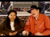 All About Square Foot Gardening
