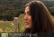 Palmaz Vineyards Review