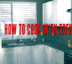 How to Cook with Tofu