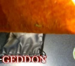 Taco-Geddon: The Taco Bell Doritos Taco Review