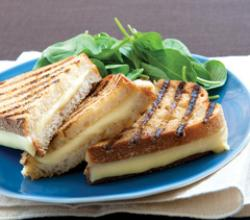 Roasted Garlic and White Wine Parrano Panini