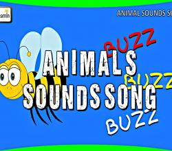 The Animals Sounds Song | Sounds of the Animals Song | Learning Songs for Children