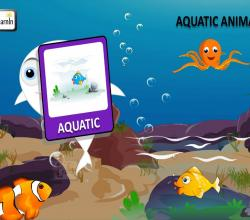 Aquatic Animals or Animals in Water