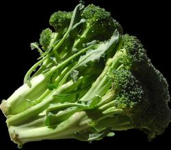 Goldenaise Broccoli