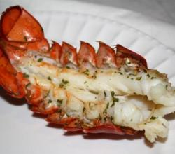 Broiled Lobster Tails Au Gratin