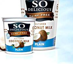 So Delicious Coconut Milk Yogurt Review