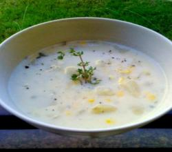 Corn and Cheese Chowder