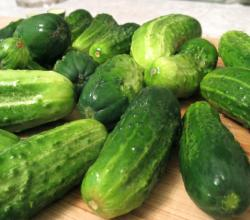 Sweet Cucumber Pickles