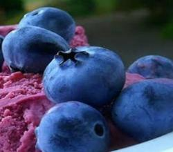 Delicious Blueberry Ice Cream