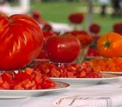 It's Prime Tomato Time from Chef Colin Moody (Tomato Fest 2007)
