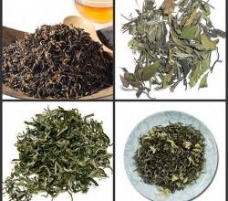 Is Black Tea As Effective As Green Tea