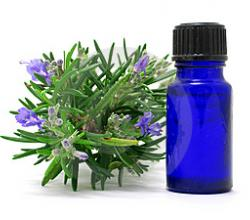 How To Preserve Rosemary In Oil