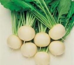 Tips To Steam Turnips